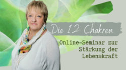 12-chakren