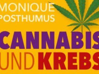 cannabis-krebs-posthumus-kamphausen