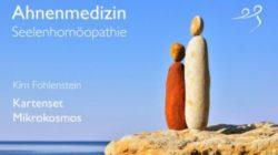 Ahnenmedizin und Seelenhomöopathie - Mikrokosmos