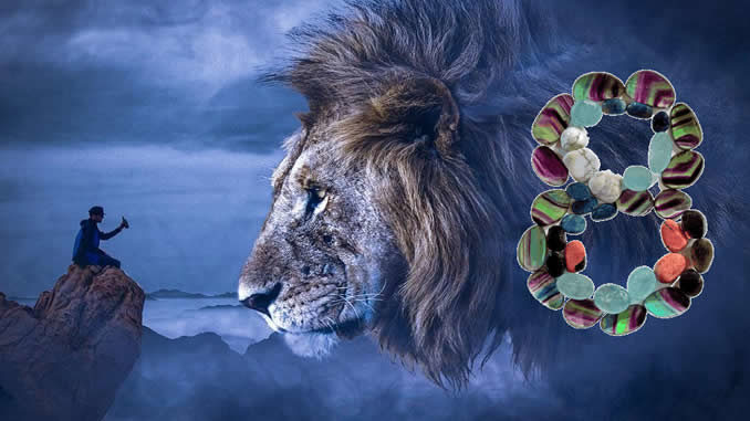 editha-wuest-august-acht-lion