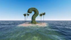 Partner und Familie-insel-palmen-fragezeichen-question-mark