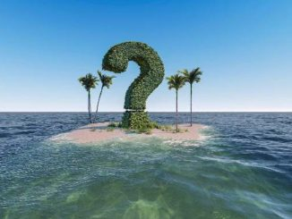 insel-palmen-fragezeichen-question-mark
