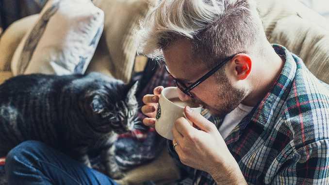 mann-kaffee-katze-adult