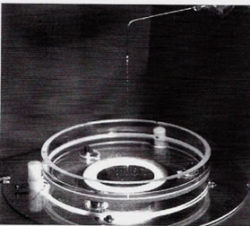 Testverfahren-Bormia-Nadeen-Althoff