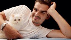 Mit dem eigenen Tier in Kontakt kommen mann katze