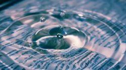 Meer unendlicher Weisheit wasser