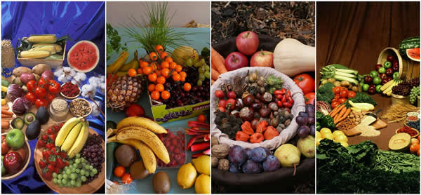 Biophotonen fruechte gemuese collage vegetables