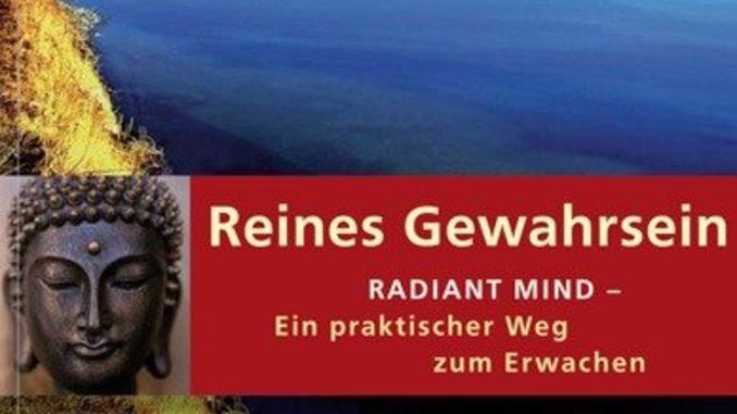 cover-reines-gewahrsein-peter-fenner-kamphausen