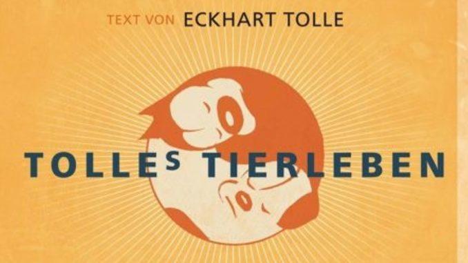 cover-tolles-tierleben-eckhardt-tolle-kamphausen