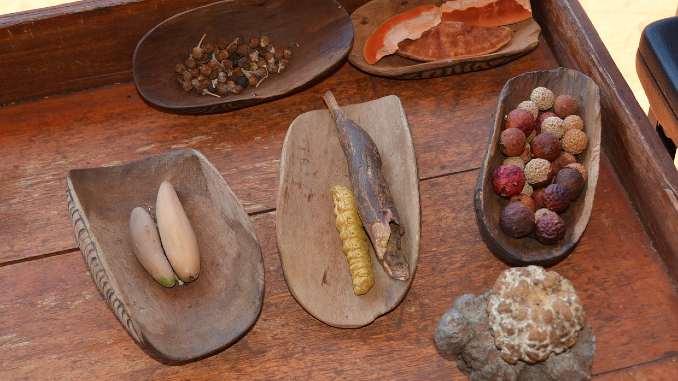 heilkraeuter-aborigines-desert-bush-tucke