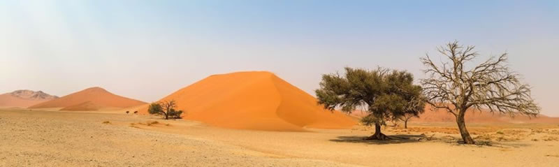 Reise-Namibia-2021-Barbara-Bessen-Einleitung