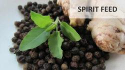 Spirit-Feed-wolfgang-neutzler-kochkurs