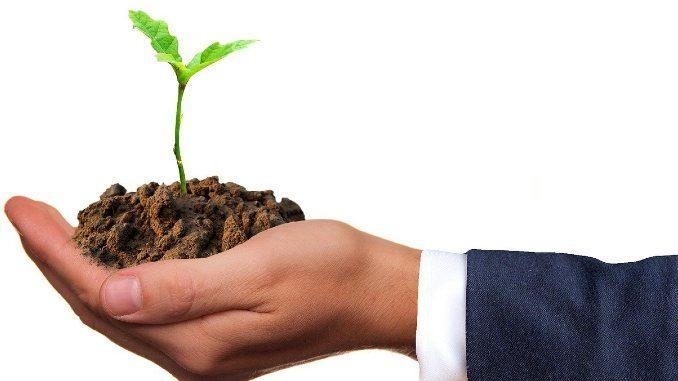 gemeinwohloekonomie-wirtschaft-natur-hand-pflanze-germ