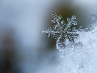 schnee-eis-kristall-snowflake