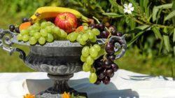 Ohne Zucker zuckerfrei obst fruit bowl