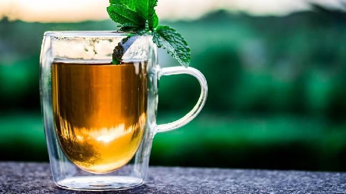 Detox Fasten Ayurveda ayurveda fasten Neutzler-teacup