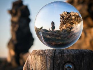 schoepfung-kugel-natur-glass-ball