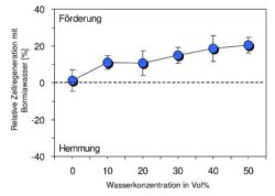 grafik-4-Nadeen-Althoff