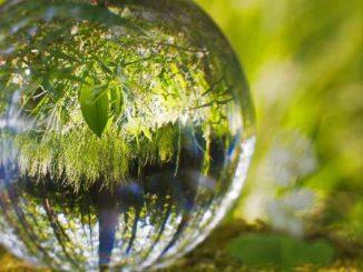 Bewusstsein-Welten-Wandel-ball