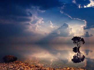 mystisch-heilung-baum-wasser-natur-sunset