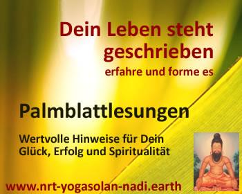 Palmblatt-Banner-1