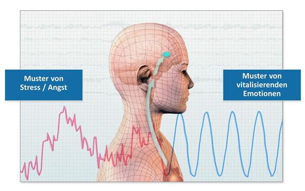 spiegel-innes-system-HeartMath-Institute