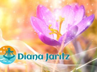 Diana-Jaritz-Mai-2021-crocus