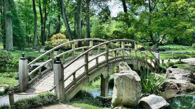 fortschritt-bruecke-natur-bridge