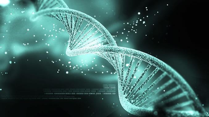 jana-stapel-gene