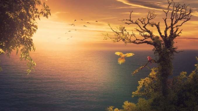 macht-paradies-natur-sea