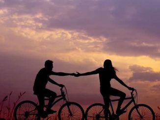 neowake fahrraeder bicycles