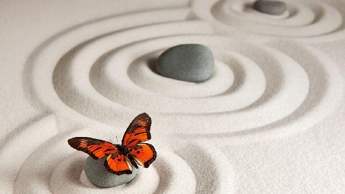 sinn-des-Lebens-steine-schmetterling-zen