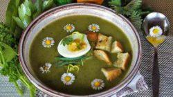 detoxing-suppe-vernal