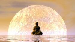 Workshops Buddha wasser planet