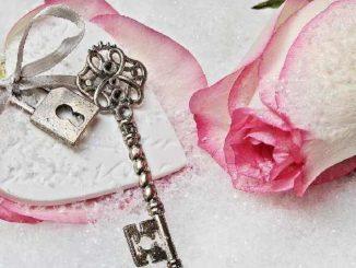 herz-schluessel-rose-heart