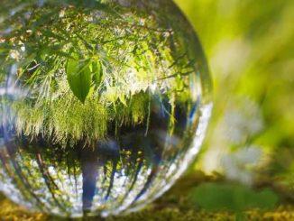 natur-kugel-ball