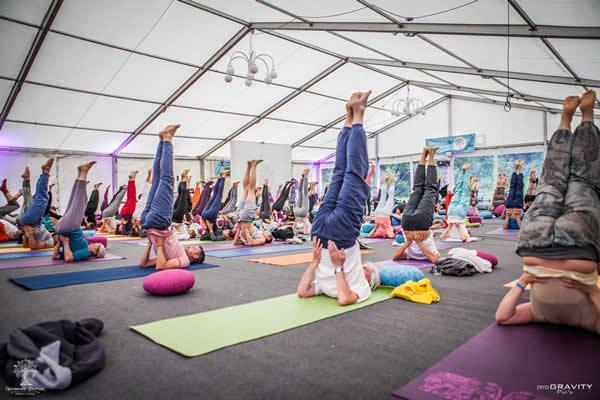 International Conference copyright-yoga-vidya-1