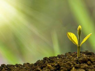 Reysel Gutierrez spirituelles Wachstum