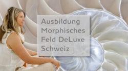 anja-klinkert-ausbildung-morphisches-feld-deluxe-schweiz