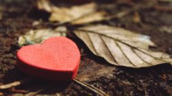 Heike Pranama Wagner Hab und Gut verlieren heart
